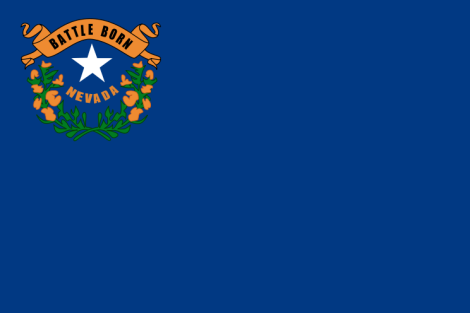This is the flag of the State of Nevada.